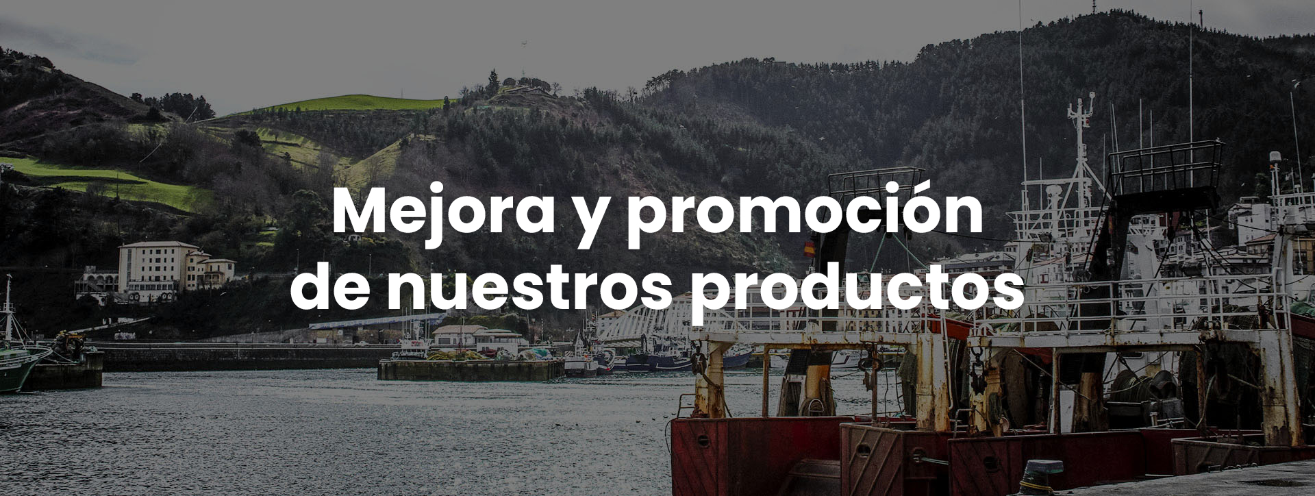 Mejora y promocion de nuestros productos